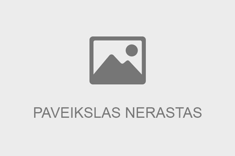 Vienos dienos pažintinė kelionė į Klaipėdą iš Vilniaus ir Kauno