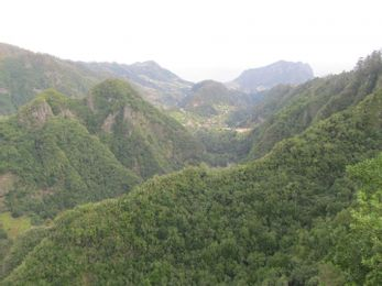 Kelionių į Madeirą įspūdžiai